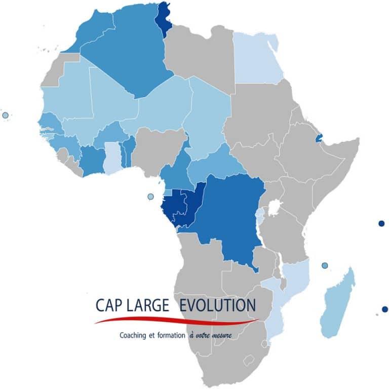 Coaching Dirigeant Afrique Francophone